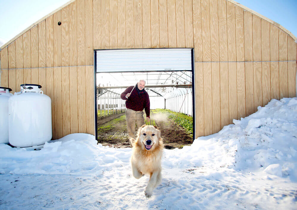 Portrait photography of Ralph Turner, owner of Laughing Stock Farm, with his dog Silas, opens the door to one of seven greenhouses on the farm where he grows produce well into the winter in Freeport Maine