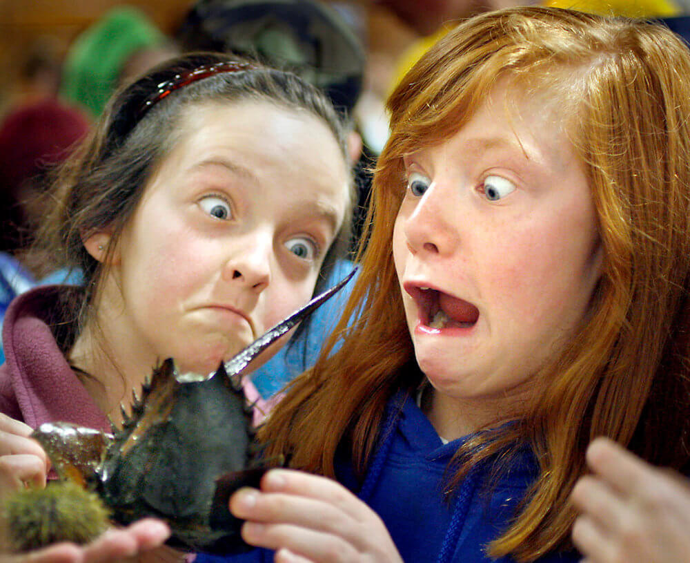 Maine photography of two girls react to a horseshoe crab at an event