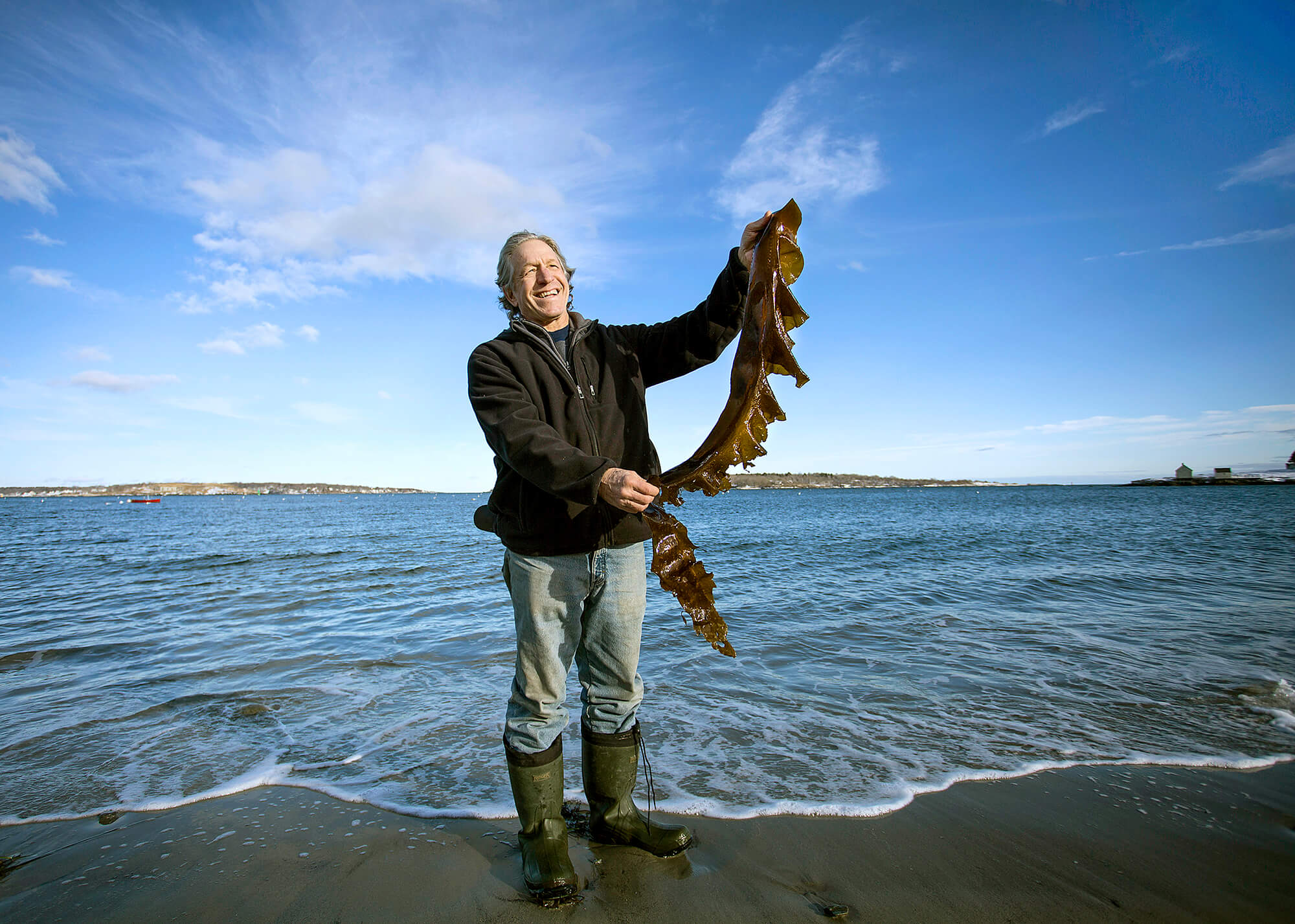 Portrait photography of Tollef Olson of Ocean's Balance holds sugar kelp on Willard Beach in South Portland